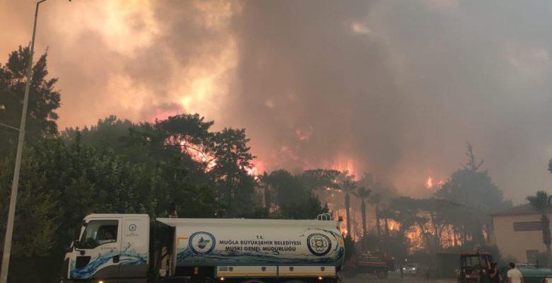 Marmaris'te ilk belirlemelere göre; 1 fabrika, 27 ev, 1 araç yandı